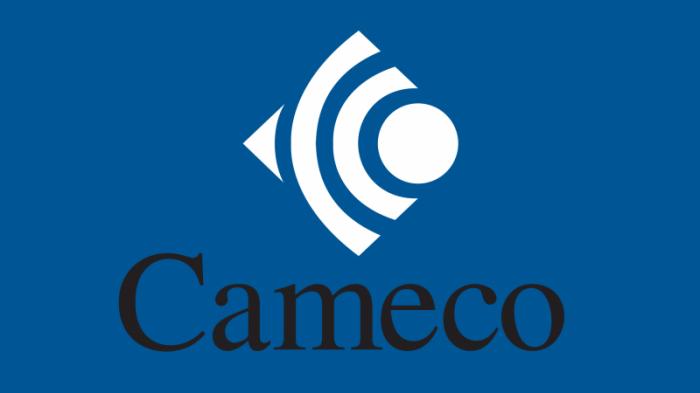 White-Cameco-Logo