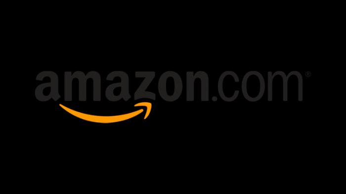 aAmazon logo