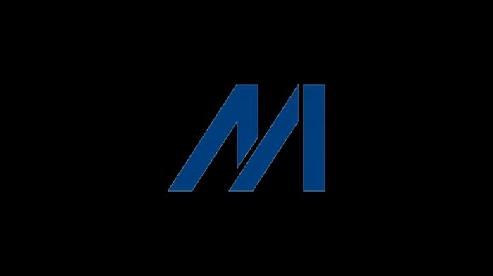Meinhardt-Group