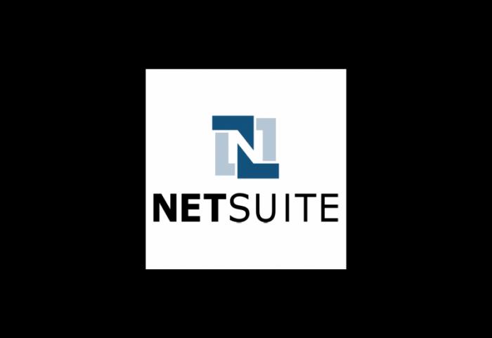 NetSuite关系管理软件解决方案logo设计