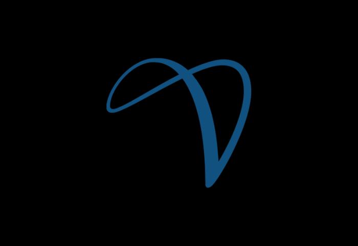 Hyder跨国咨询logo设计